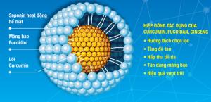 Cấu trúc Phức hệ Nano FGC